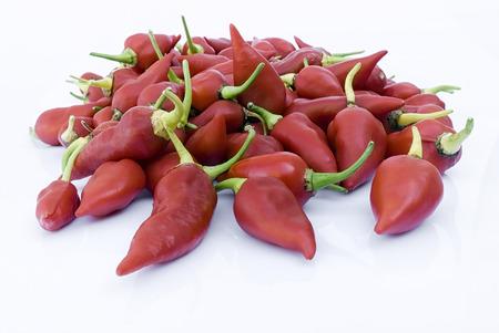 Red chili pepper on white beckground