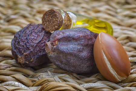 Argan fruit (Argania spinosa), nuts, this original seed of Morocco is used in cosmetics