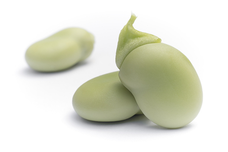 Broad beans (Vicia faba) in seeds on white background Banque d'images