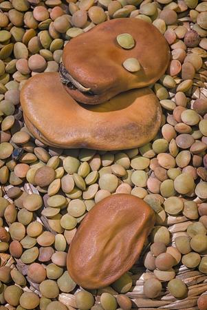 Dried broad beans (Vicia faba var. major) and Brown Lentils (Lens culinaris)