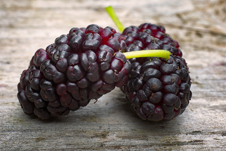 Black mulberry  (Morus nigra), two berries on the wood table
