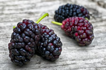 Black mulberry  (Morus nigra), pile of berries Reklamní fotografie