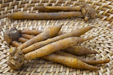 Finger root; Krachai (Boesenbergia rotunda ) in the basket; thai herb