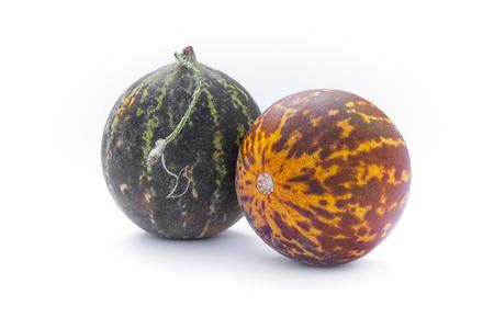 Tigger Melon (Cucumis melo Imagens