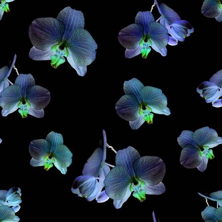 Orchid on black background. Isolated flowers. Seamless floral pattern for fabric, textile, wrapping paper. Tropical flower