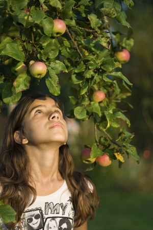 Girl under apple branches