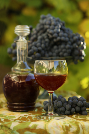 Homemade wine from grapes. Decanter, glass, grapes  photographed against the background of the vine.