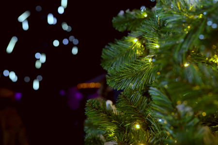 Christmas tree branches in dark. Closeup of Christmas tree background.