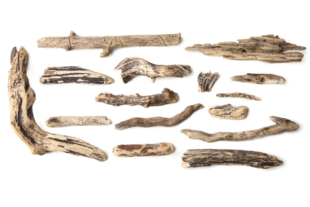 Set of driftwood isolated on white background. Pieces of river drift wood.