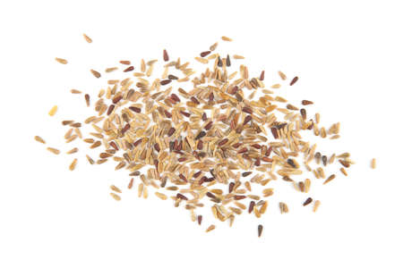 China aster seeds isolated on white background.Pile dry flowers seeds, top view. 版權商用圖片