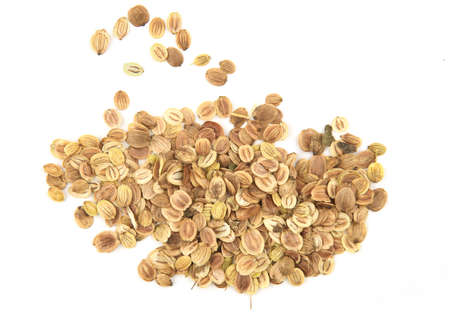 Parsnip seeds isolated on white background.Pile dry vegetable seeds, top view.