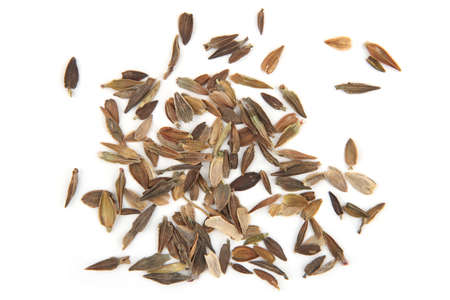 innia flowers seeds isolated on white background. Pile dry Zinnia Elegans Dahlienflora flowers seeds, top view.