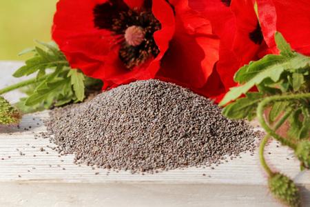 opiate: Poppy seeds
