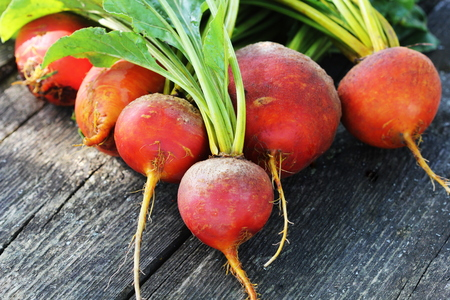 Raw organic golden beets on wooden background Banco de Imagens - 84157723
