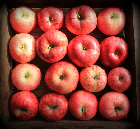 Background with fresh red apples . Top view Stock Photo