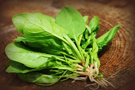 Bunch of fresh spinach with roots over old wooden surface. Dark rustic style.