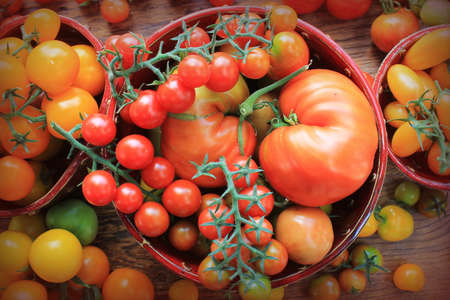 Fresh colorful ripe tomatoes on wooden board. Colorful tomato - red,yellow , orange. Harvest vegetable cooking conception. Top view. Foto de archivo