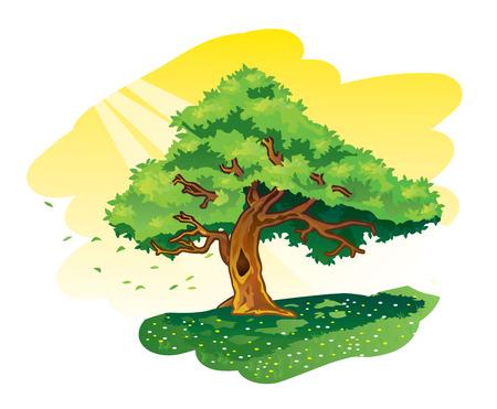 big tree: Illustration of big green tree on flower meadow