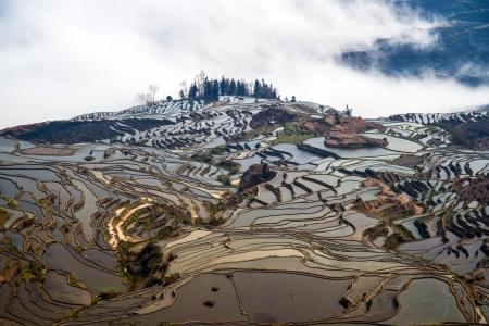 yuanyang: Rice terraces in Yuanyang, Yunnan, China; a Hani ethnic monority area