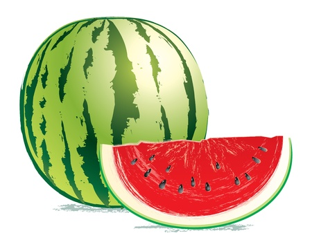 A delicious watermelon and a slice isolated on white background Illustration