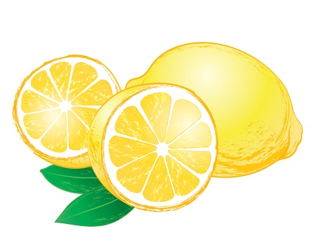 Tasty lemon illustration with leaves on white