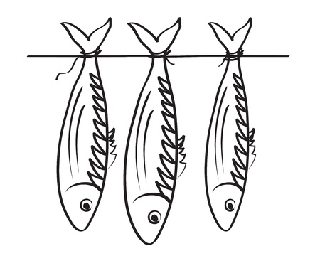 illustration of the stockfishes. Sea roach. Vector