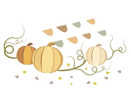 illustration of vintage pumpkins isolated on white background