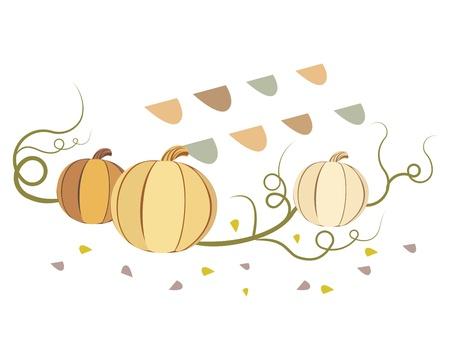 illustration of vintage pumpkins isolated on white background