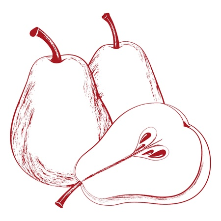 Vector illustration of tasty pears isolated on white Illustration