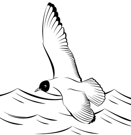 wingspan: Seagull flying over the sea vector illustration