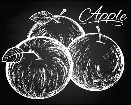 vector apples illustration on the chalkboard background