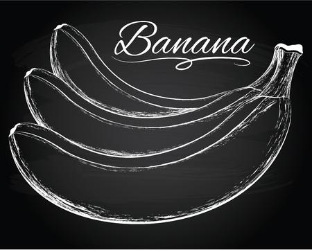 Tasty vector bananas illustration on the chalkboard background