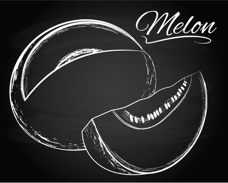 rinds: Tasty vector melon illustration on the chalkboard background Illustration