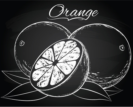 Vector ripe orange on the chalkboard background
