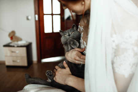 Radiant bride smiles while holding little kitten in her arms