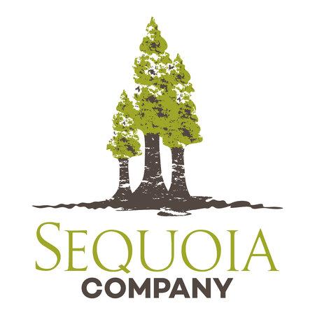 Sequoia emblem Illustration