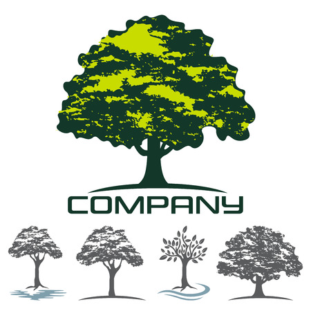 Deciduous tree logo