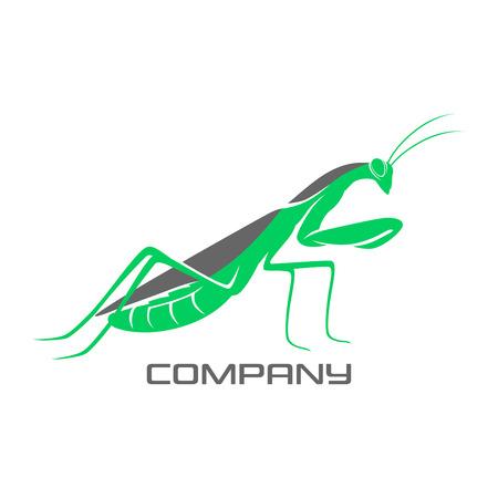 Modern mantis Illustration