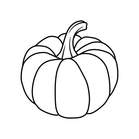 pumpkin Vectores