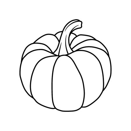 pumpkin Illustration