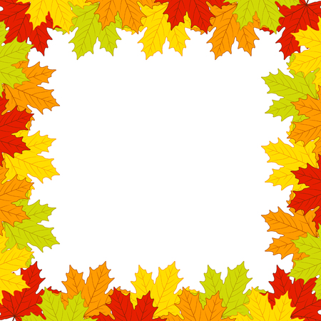 Autumn leaves on white background Illustration