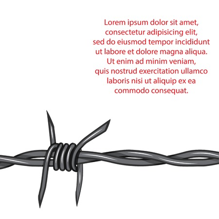 barb: Barbed wire background. Vector fence illustration isolated on white. Protection concept design.