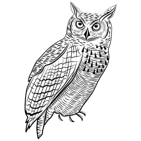Owl bird as halloween symbol for mascot or emblem design vector illustration for t-shirt. Sketch tattoo design. Vector