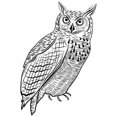eagle owl: Owl bird as halloween symbol for mascot or emblem design vector illustration for t-shirt. Sketch tattoo design. Illustration