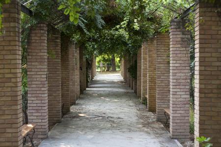 entrance arbor: Pergola in Athens park, the National Garden (formerly the Royal Garden) Greece photo Stock Photo