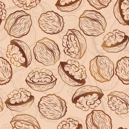 Walnut  seamless vector pattern food background Vector