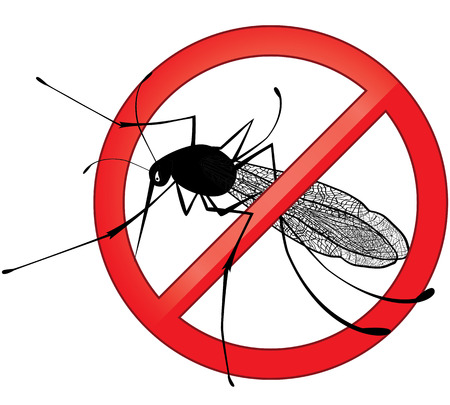 no mosquito: No mosquito gnat insect sign. Carry many disease such as dengue fever, zika virus, yellow fever, chikungunya disease, filariasis, malaria , enchaphalitits.