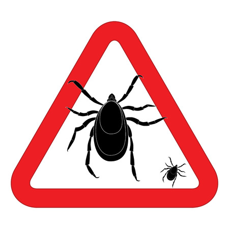 lyme: Mite warning sign. illustration of tick warning sign. Bud warning sign. Parasite warning sign. Mite skin parasite sign. Mite skin parasite isolated on white. Illustration