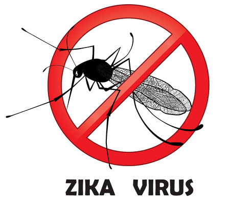 no mosquito: No zika mosquito gnat insect sign. Carry many disease such as dengue fever, zika virus, yellow fever, chikungunya disease, filariasis, malaria , enchaphalitits. Illustration