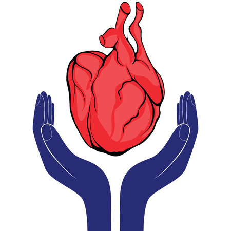 Hands and heart. Icon of kindness and charity valentine day